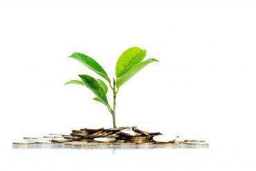 Indlånsrente: Sådan får du mest ud af dine penge