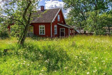Undgå arveafgift: Giv sommerhuset til børnene